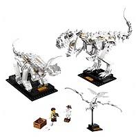LEGO 21320 恐竜の化石